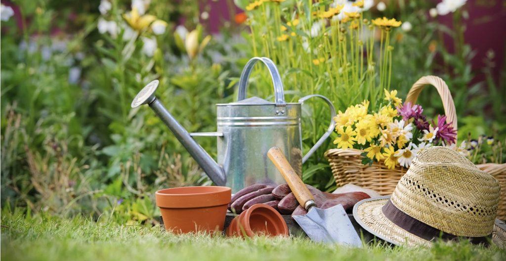 10 cuidados a ter com a sua casa no verão