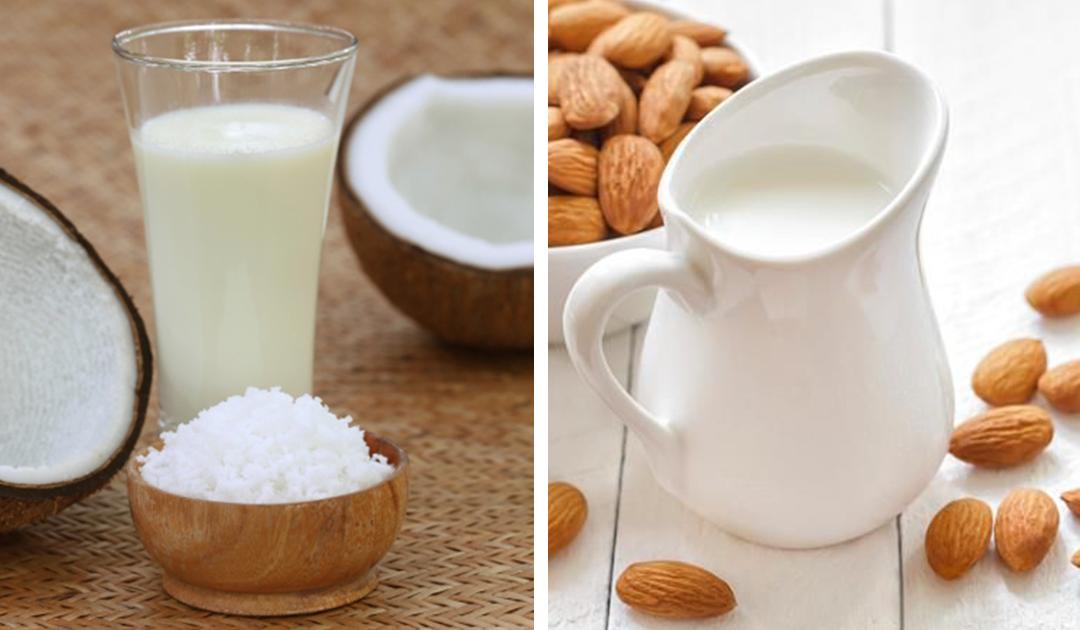 Receita de leite de coco e de amêndoa – 2 alternativas ao leite de origem animal