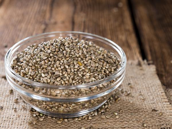 Benefícios das sementes de Cânhamo para o nosso organismo- Fonte de proteína