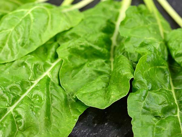 5 alimentos que deve evitar para ter a barriga lisa e 5 que deve consumir diariamente- Legumes
