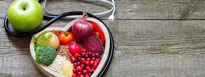 Dicas saudáveis – benefícios da moringa