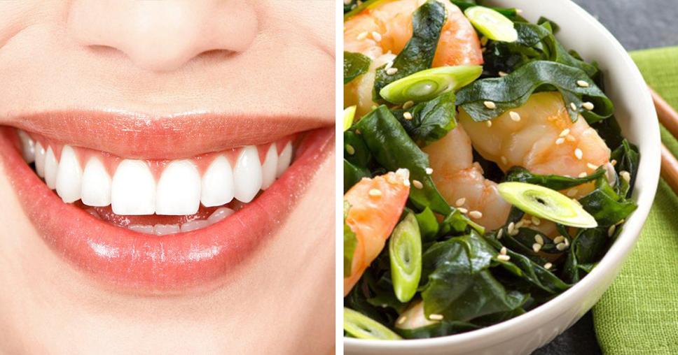 Dicas saudáveis – benefícios de consumir algas
