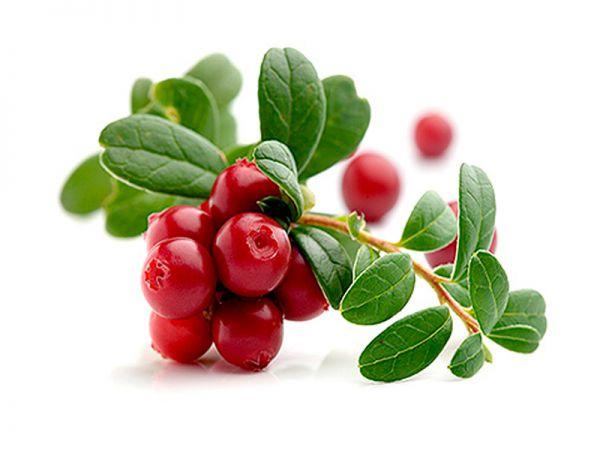 8 Benefícios dos arandos vermelhos para à nossa saúde- reduz os níveis de glicémia no sangue