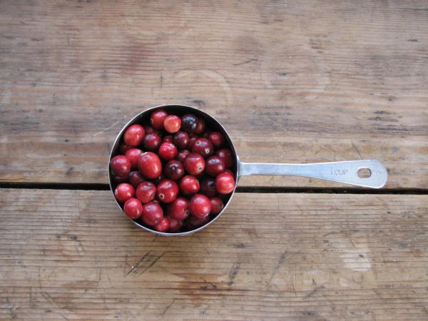 8 Benefícios dos arandos vermelhos para à nossa saúde- Fortalece o nosso sistema imunitário