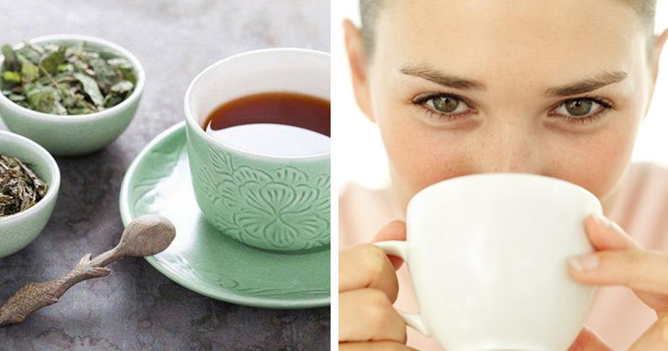8 Benefícios do chá de cavalinha para o nosso organismo
