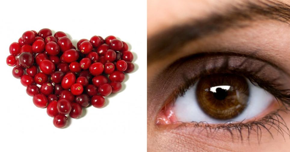 8 Benefícios dos arandos vermelhos para a nossa saúde