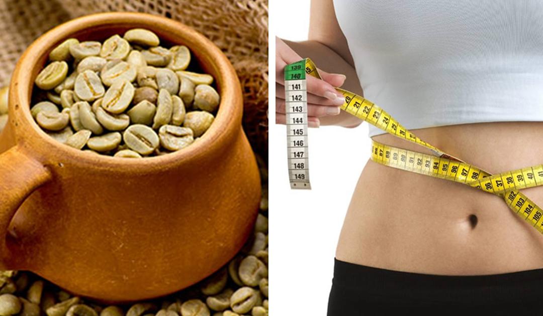 Dicas saudáveis – Benefícios do café verde