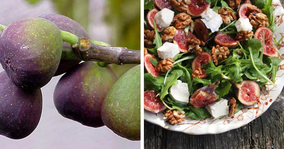 Receita de Salada de Figo com Nozes e Queijo