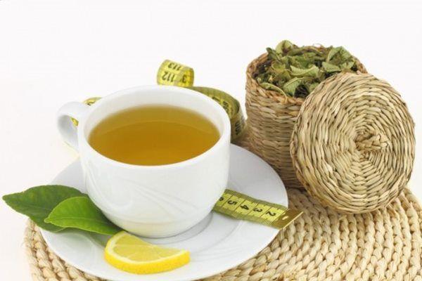 7 Benefícios das folhas de chá de boldo para a sua saúde- Antioxidante