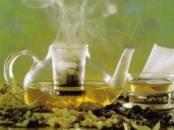 7 Benefícios das folhas de chá de boldo para a sua saúde- Facilita o processo de digestão