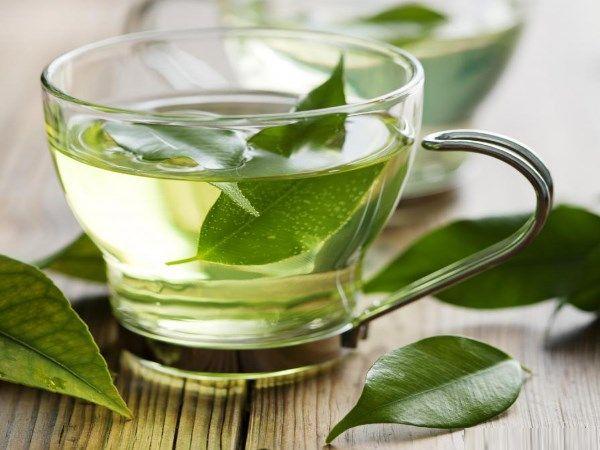 7 Benefícios das folhas de chá de boldo para a sua saúde- Melhora a saúde do fígado