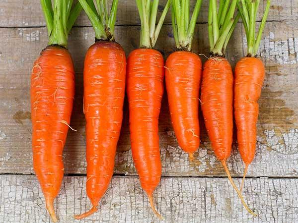 Receita de natal: Sonhos deliciosos de cenoura com laranja- Receita de natal: Sonhos deliciosos de cenoura com laranja