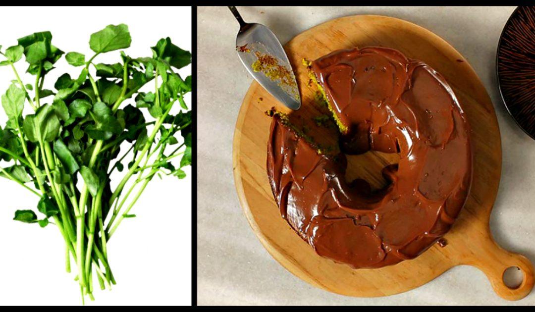 Receita de bolo verde com cobertura de chocolate