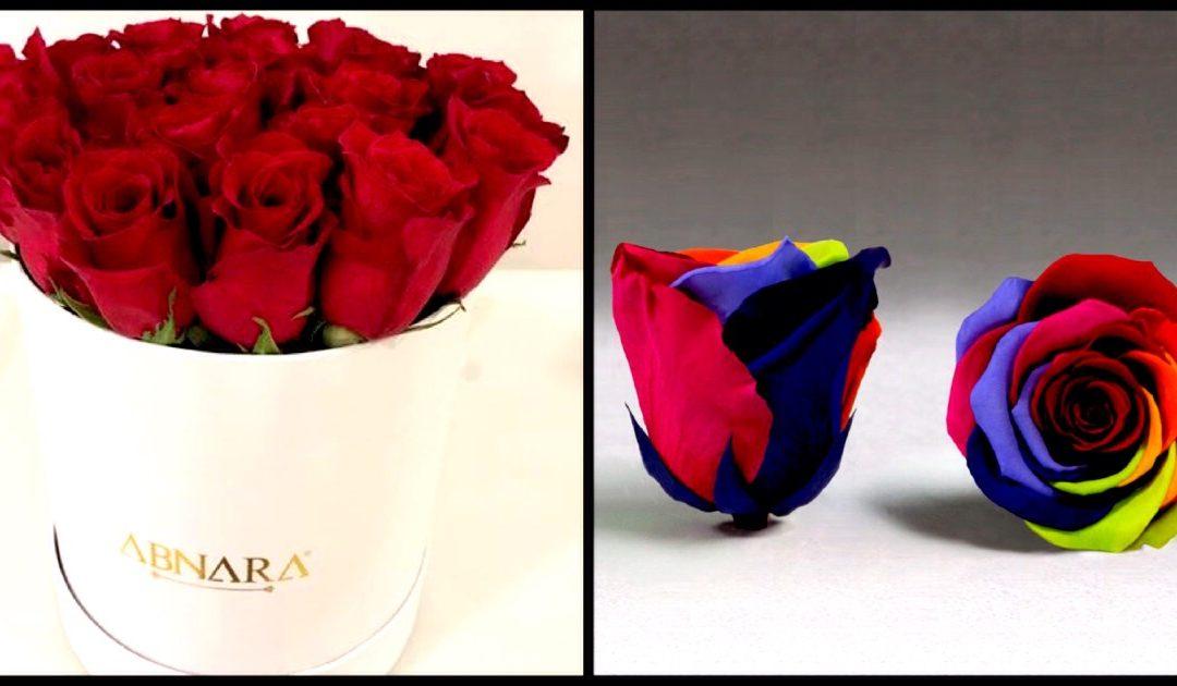 Abnara Events & Flowers – rosas que duram até 4 anos