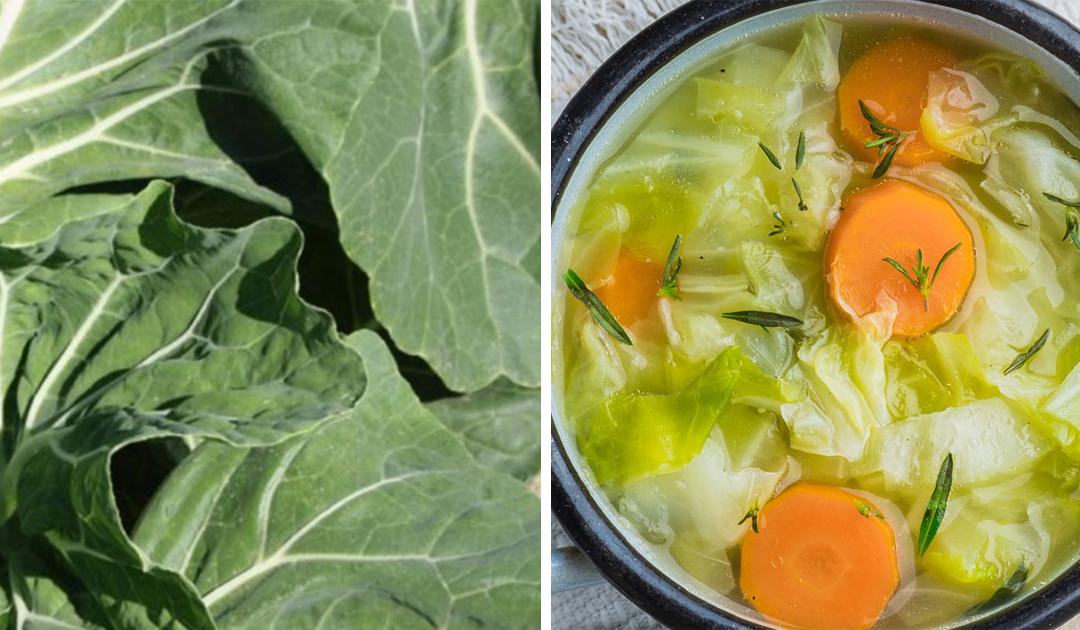 Sopa de couve-galega – Um prato muito saudável