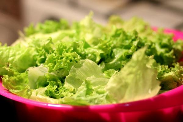 Alimentos com calorias negativas- Alface