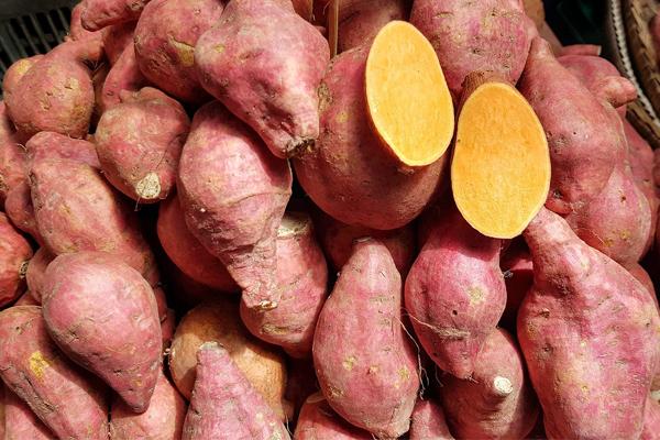 Alimentos que deve comer depois de treinar - Batata doce