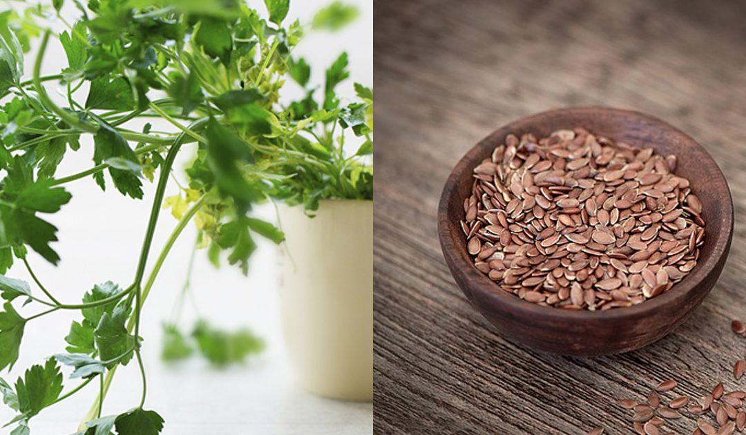10 alimentos anti-cancro que deve ter em casa