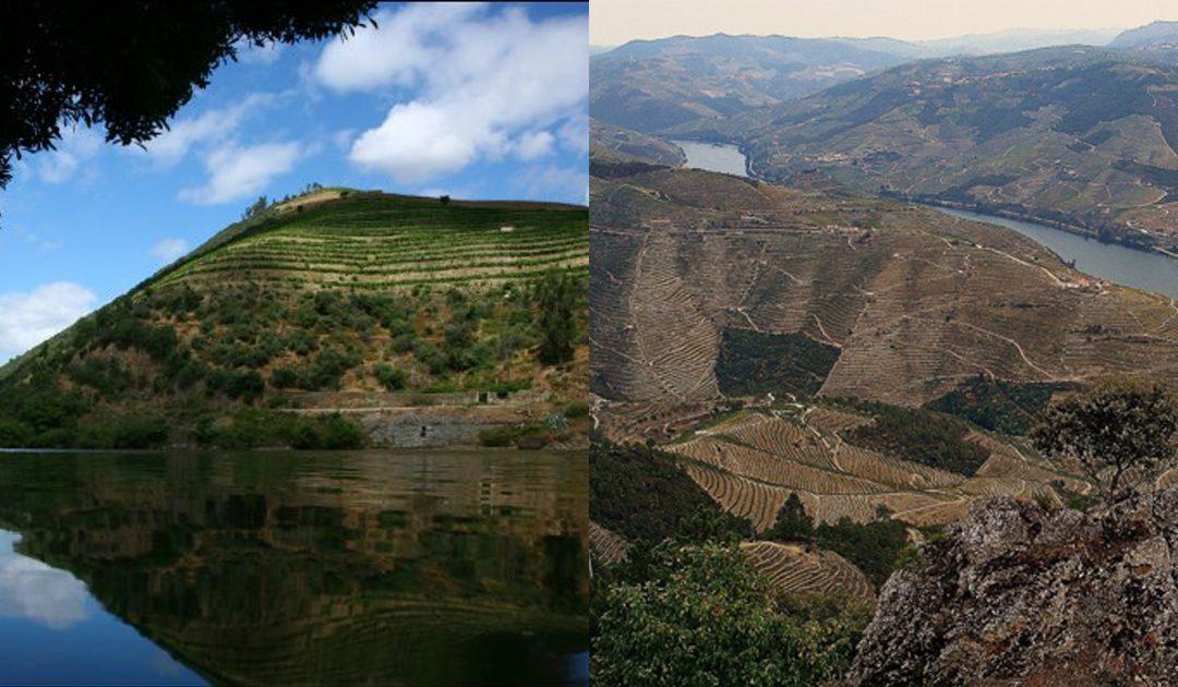 Roteiro de 2 dias maravilhosos no Douro