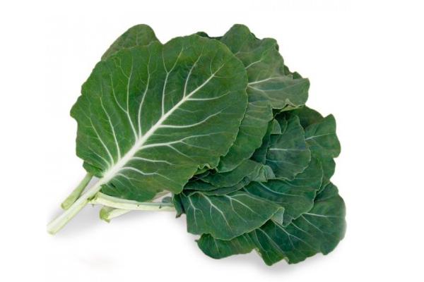 Receita tradicional de caldo verde- Couve