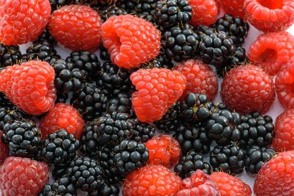 10 alimentos anti-cancro que deve ter em casa- Frutos silvestres