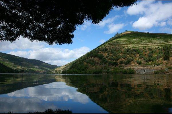 Roteiro de 2 dias no Douro- Região do Douro