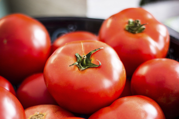 Receita tradicional de gaspacho- Tomate