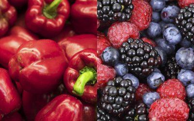 Alimentos que ajudam a retardar o envelhecimento