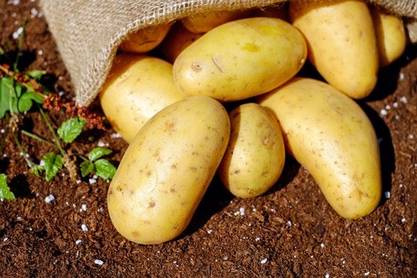 Alimentos que não devemos aquecer no microondas- Batatas