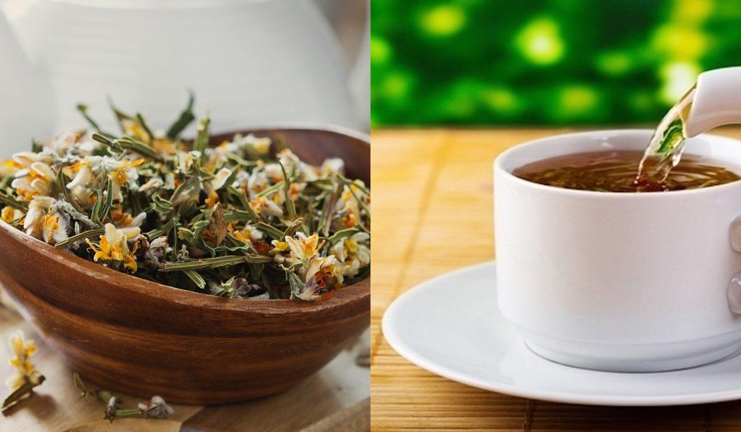 Chá de carqueja- um chá que merece a sua atenção