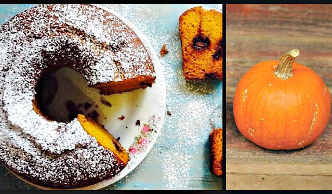 Receita de bolo de abóbora e laranja com chocolate