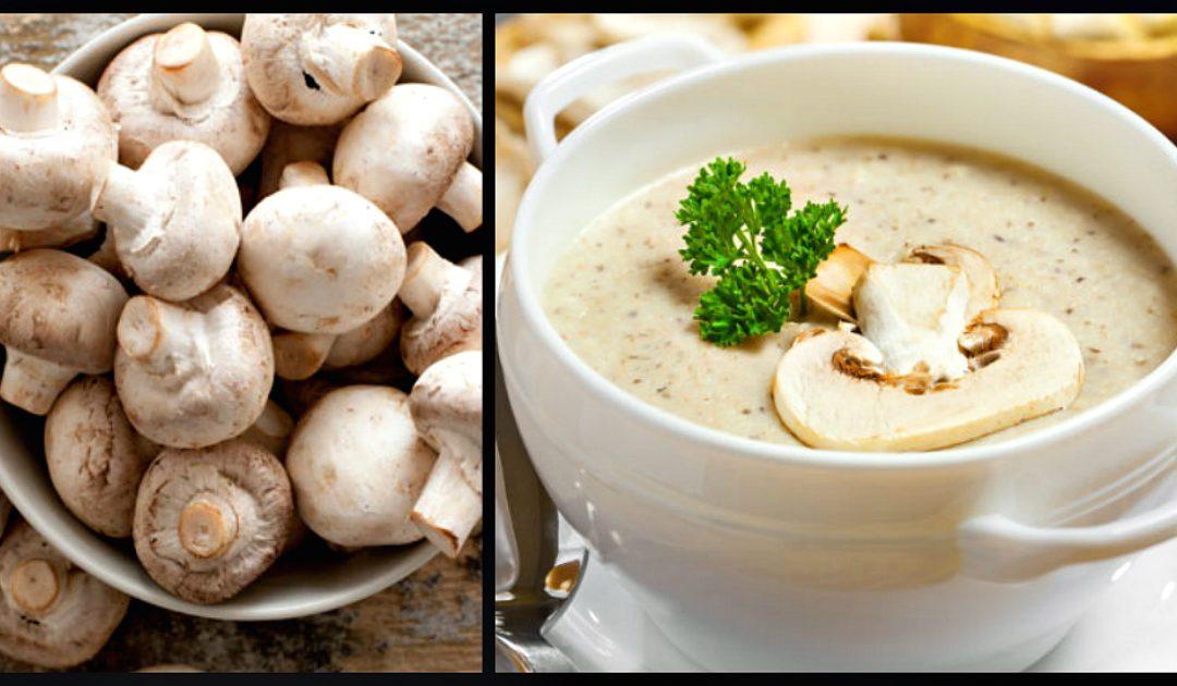 Creme de cogumelos para aquecer nos dias frios