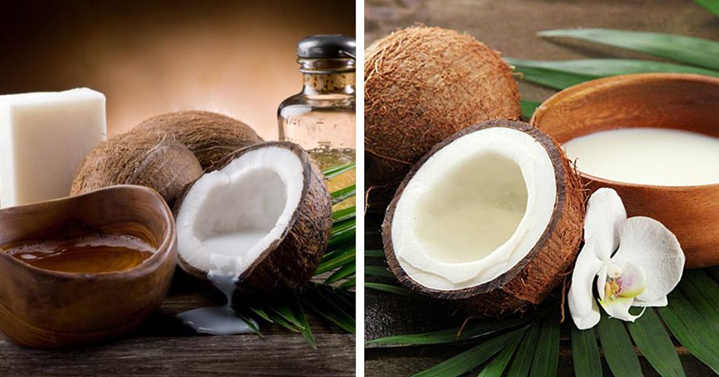 Dicas saudáveis: 7 variantes do coco