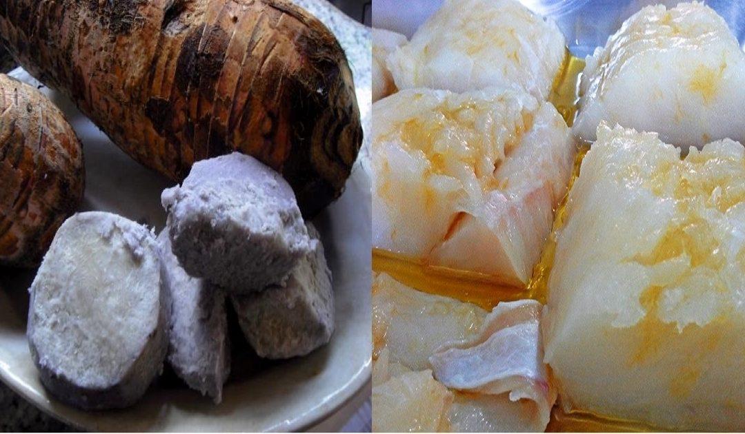 Inhame com bacalhau – um prato tradicional da Quaresma na Madeira