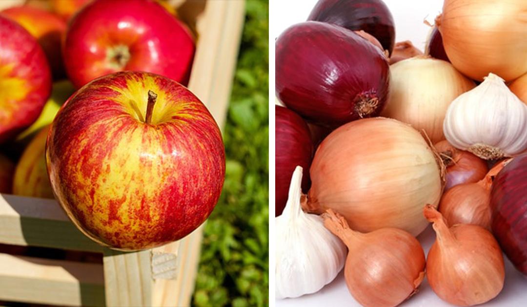 Alimentos que devemos consumir todos os dias