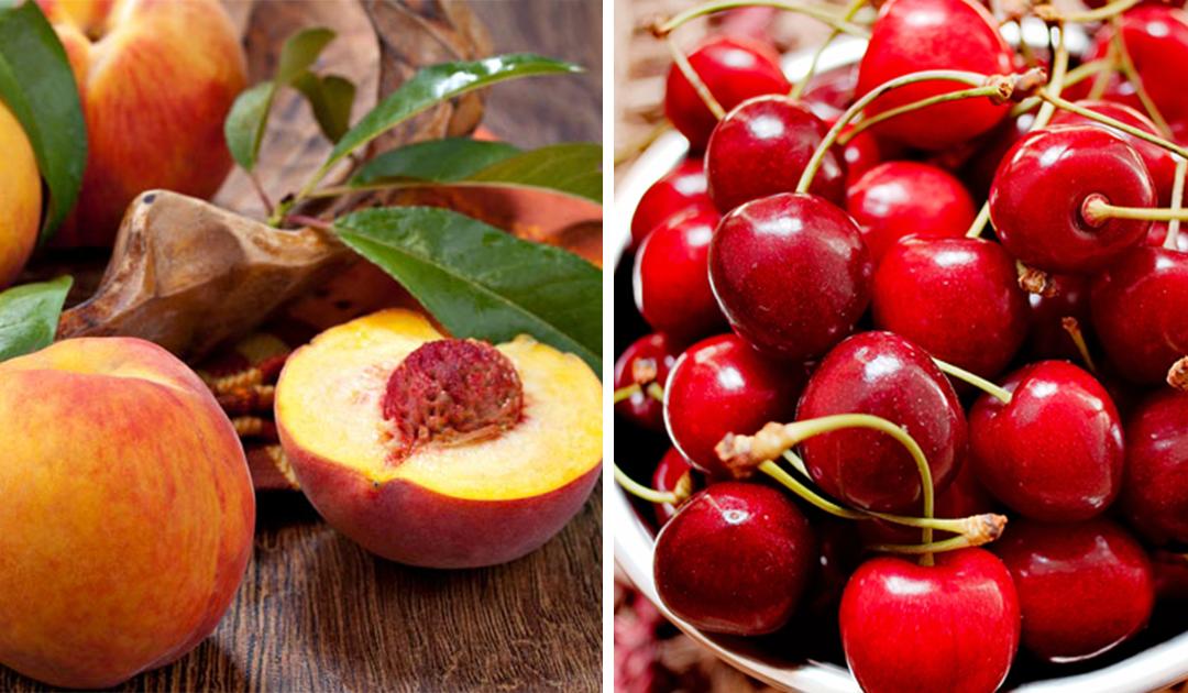 Os 7 melhores frutos para consumir no verão