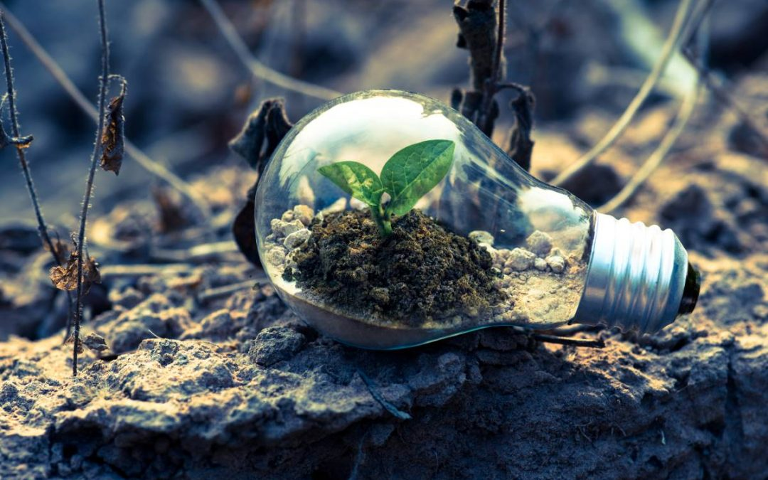 Poupe no recibo da água e da luz, e seja amiga do ambiente!